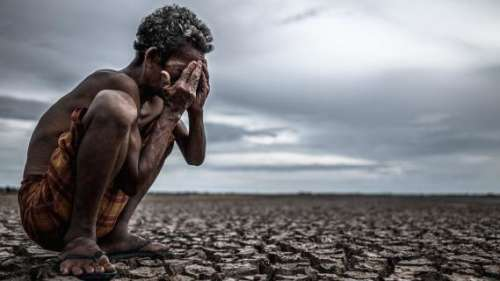 Global warming causing one-third of all global heat deaths: study