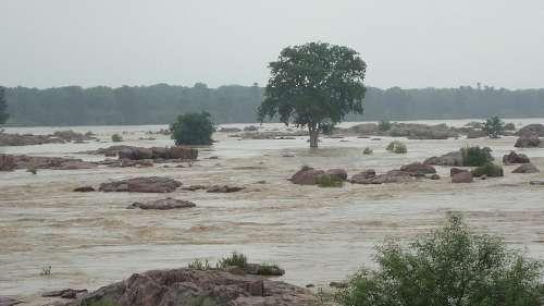 मध्य प्रदेश: सुनार नदी में आया उफान, रस्सी पर चलकर लोगों ने बचाई जान
