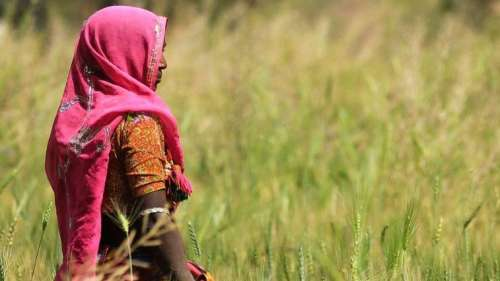 Why are women farmers not counted as farmers? | BOOM