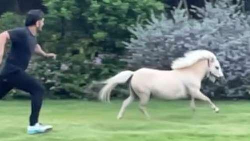 घोड़े के साथ दौड़ते नज़र आए धोनी, पत्नी साक्षी ने शेयर की वीडियो