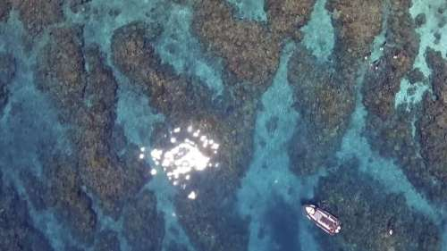 Australian seethes at Great Barrier Reef downgrade by UNESCO