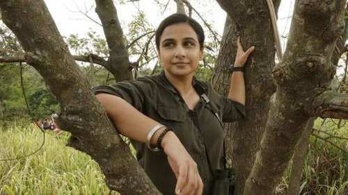 'Twisting of facts': Shooter who killed tigress Avni mulls legal action against 'Sherni' makers