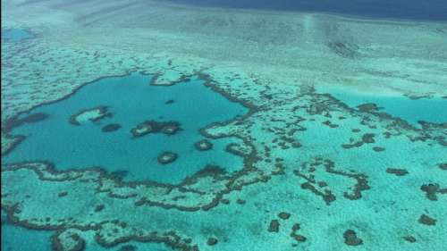 UNESCO's proposal to downgrade Great Barrier Reef's World Heritage status irks Australia