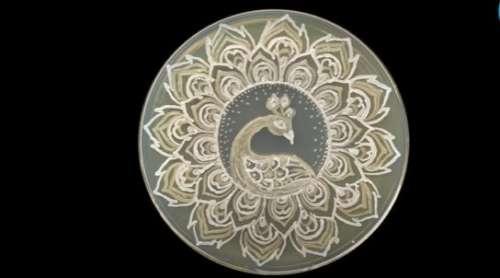 Art in a petri dish