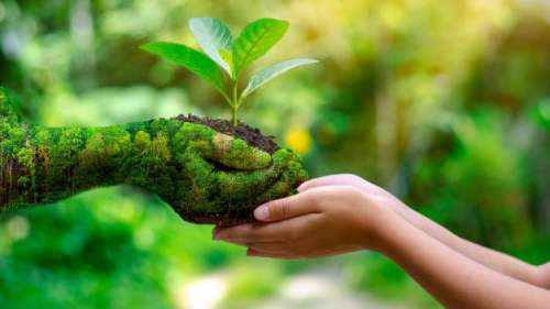 Celebrate Earth Day 2021: 'Restore Our Earth'