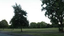Wandsworth Common