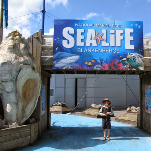 2014-05-25 Sealife image 4