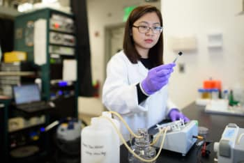 Postdoctoral scholar Chong Liu examines a carbon-amidoxime electrode as part of research to improve extraction of uranium from seawater. (Image courtesy of L.A. Cicero.)