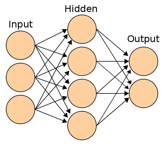 A neural net with a single hidden layer. The arrows represent output from one neuron taken as input for another. (Image courtesy of Colin M.L. Burnett.)