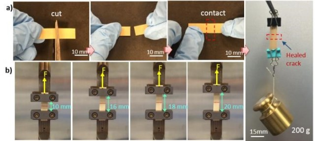 Penn State researchers have developed a flexible electronic material that self-heals to restore many functions, even after multiple breaks. (Image courtesy of Qing Wang/Penn State.)