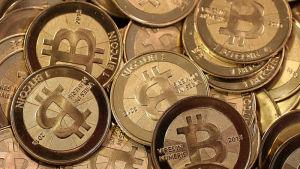 bitcoin, bitcoin price, bitcoing price today, bitcoin auction