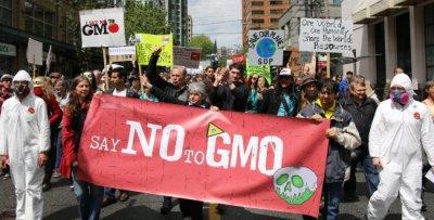 GMOs.jpg
