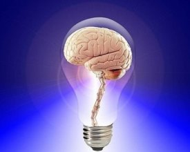Brain_Power____Pixabay.jpg