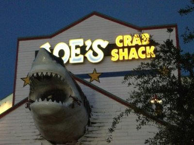 Shark_Crab.jpg