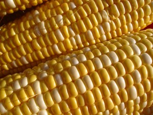 Futures Outlook: Is It Time for Corn to Pick Up the Slack?
