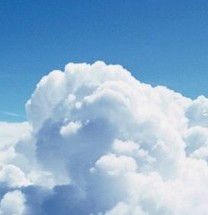 Cloud Computing Stocks Shine