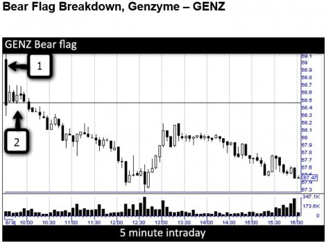 Bear_Flag_Breakdown__Genzyme___GENZ.jpg