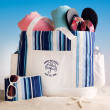 Honeymoon Beach Tote for Two - Blue Stripes