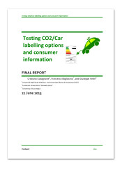 Final report - Testing CO2/Car labelling options and consumer information