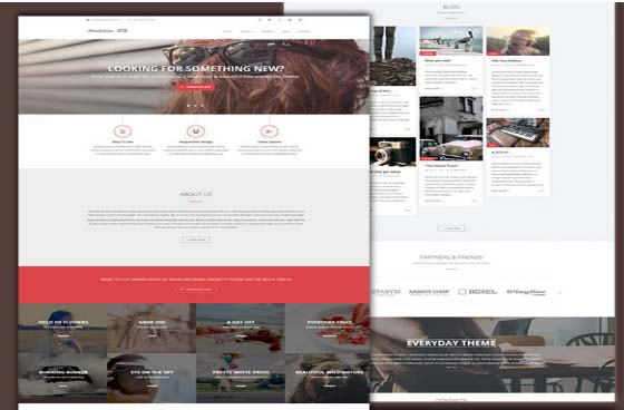 Maskitto Light Wp Theme