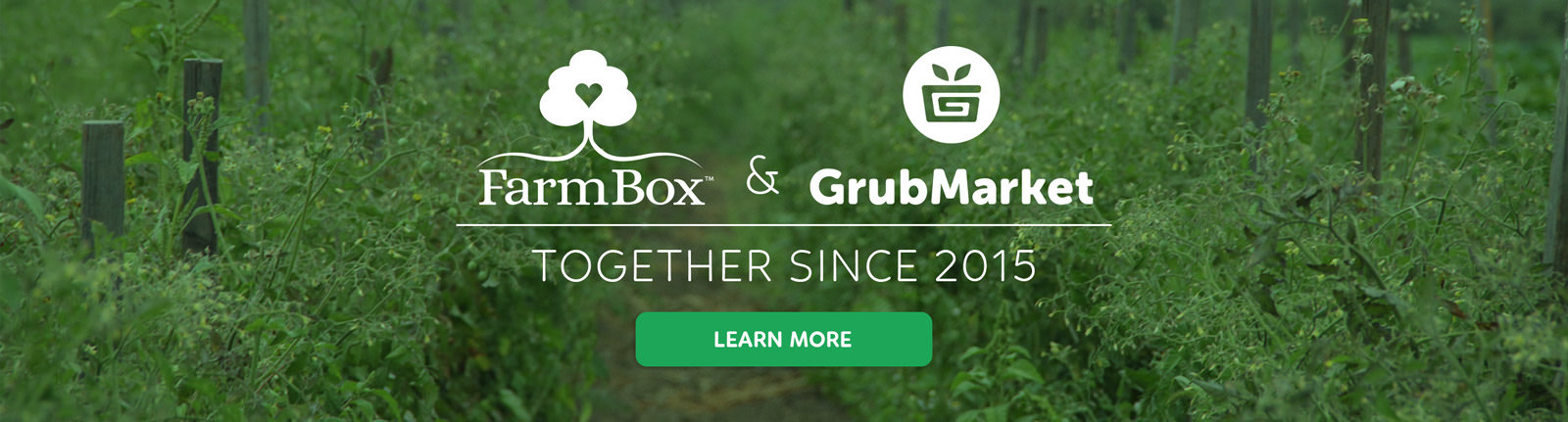 GrubMarket & FarmBox