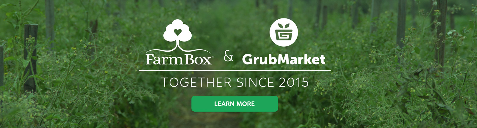 FarmBox is now GrubMarket