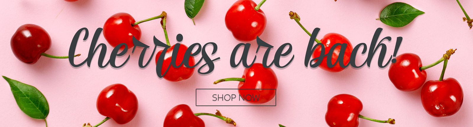 Cherries are Back