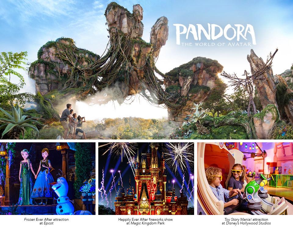 Walt Disney World Resort Contest