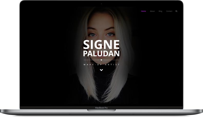 Signe Paludan Website Design on Laptop