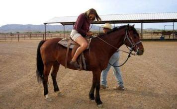 Horse riding classes in Dubai