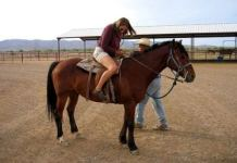 Horse riding classes in Dubai