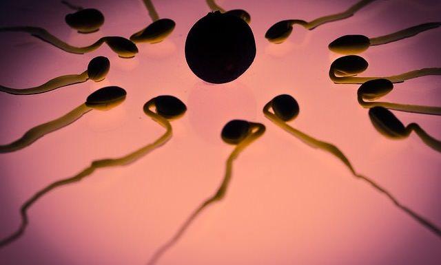 Sperm donation centre in bangalore
