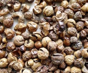 HEALTH BENEFITS OF DRY TURKEY BERRY ( Sundakkai )