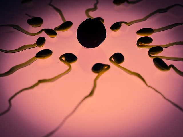 Sperm donation centre in bangalore