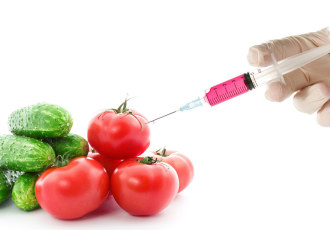 what is a gmo? Not this.
