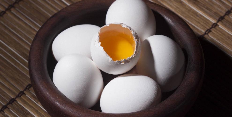 cage free eggs vs. regular eggs