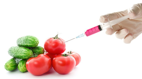 What Is a GMO Food? Not Something With A Syringe.