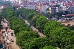 Hanoi trees