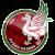 Rubin Kazan logo