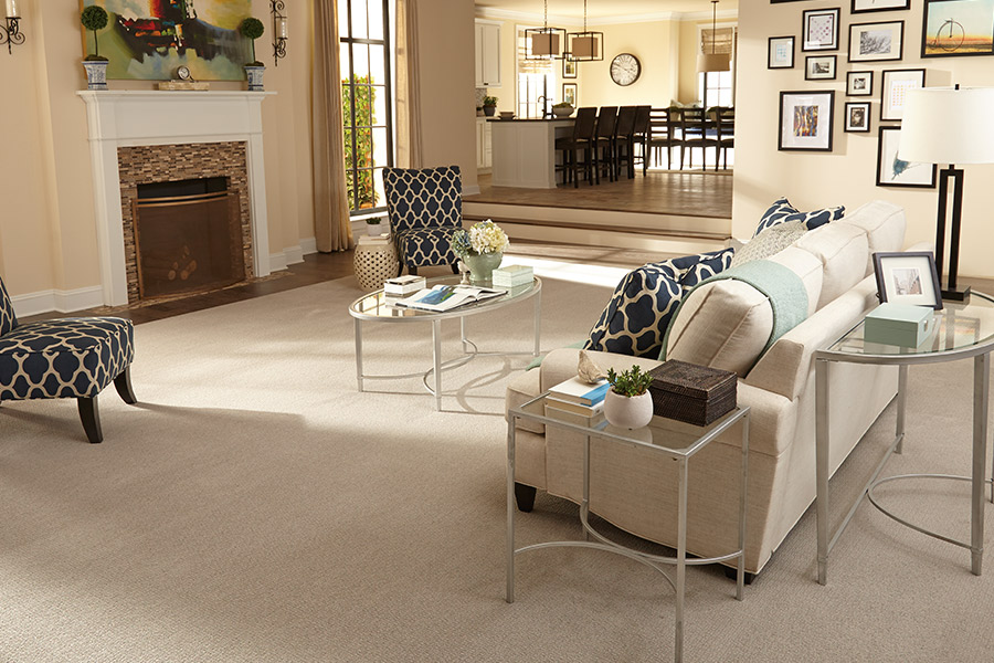 Modern carpeting in Hudson WI from Carpeting by Mike