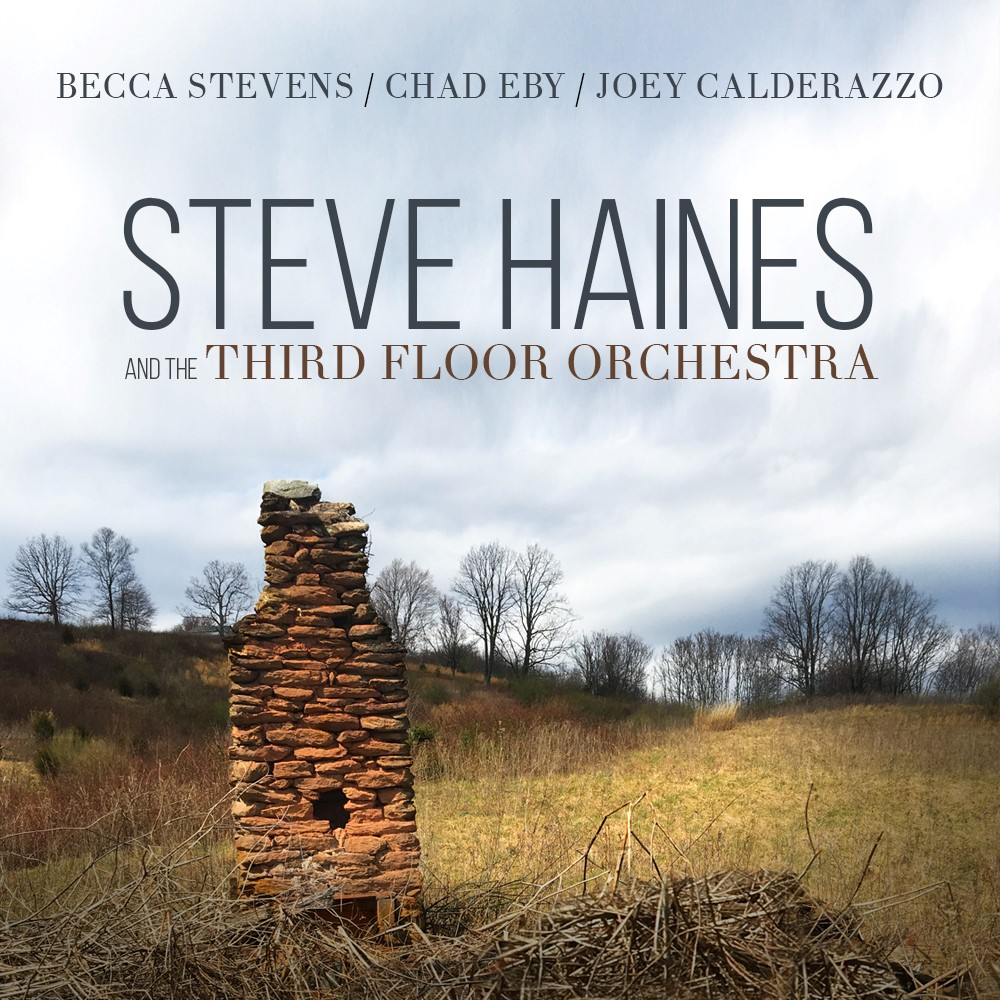 Cover Album - Steve Haines and the Third Floor Orchestra