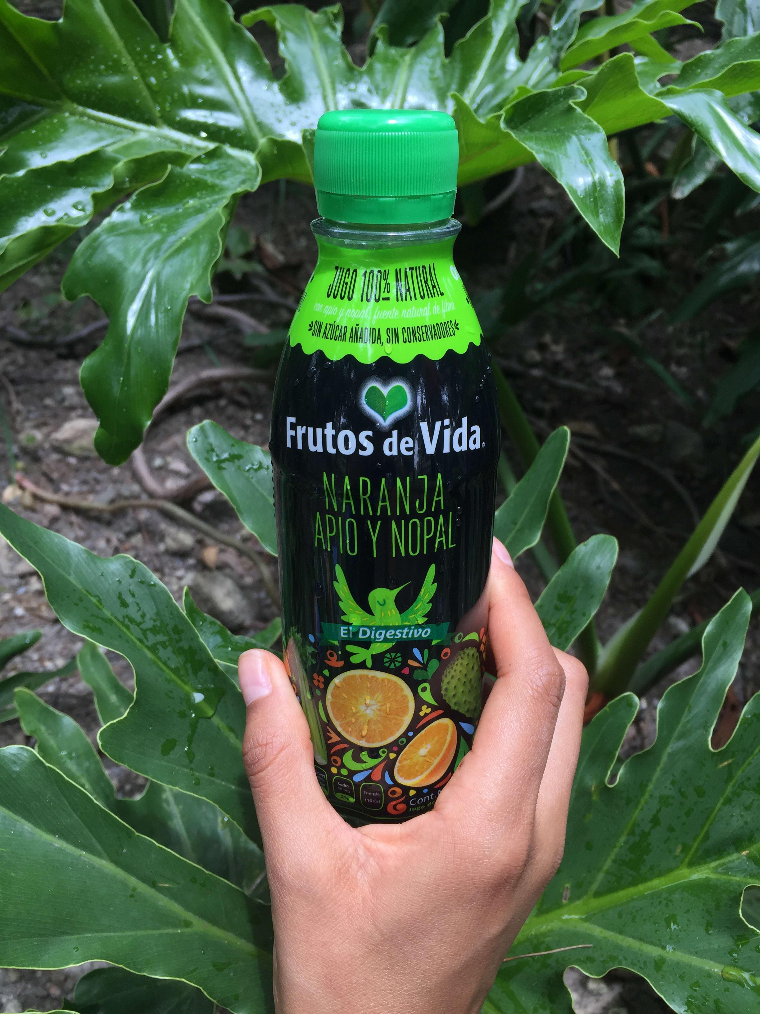 jugos saludables Frutos de Vida