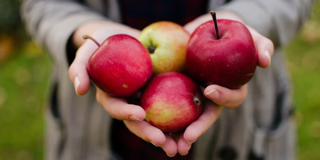 Manzanas en manos