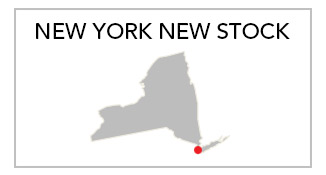 New York New Stock