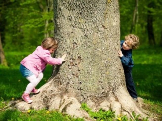 Utomhuslek och barns hälsa «  Aktuellt om Vetenskap och Hälsa