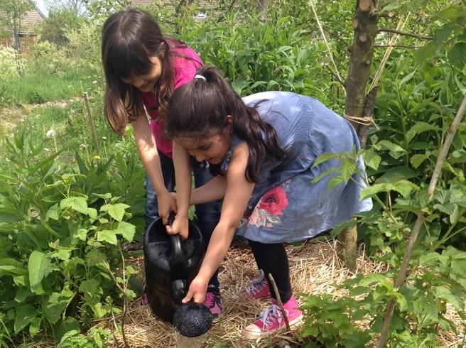 Trädgårdsodling ska ge förskolebarn bättre hälsa
