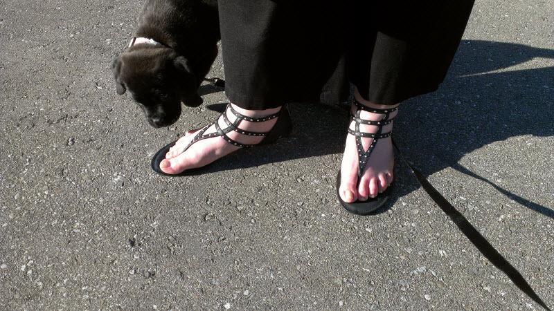 JustFab.ca Corfu Sandals