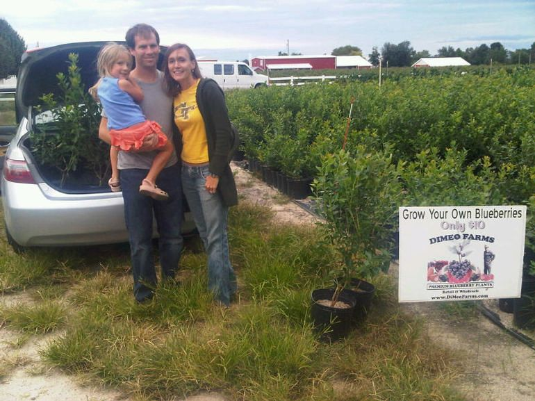 DiMeo Farms & Blueberry Plants Nursery - This adorable young couple drove out to DiMeo Farms with their little buy to personally pick out the perfect blueberry plants to put in their back yard so they can start growing blueberries. They said that they were tired of paying lots of money at the grocery store for berries so they decided to grow their own blueberries at home. CALL: (609) 561-5905 to order your blueberry plants now and remember WE CAN SHIP DIRECT TO YOUR DOOR or you can come to pick-up your order.