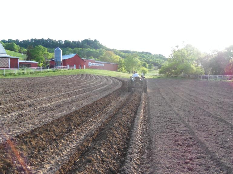 Bell Point Farms - Image 4