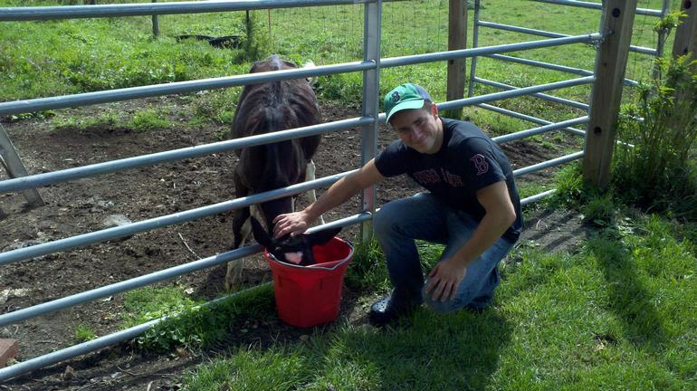 Meadow Mist Farm - Visiting the Baby Calf at MMF